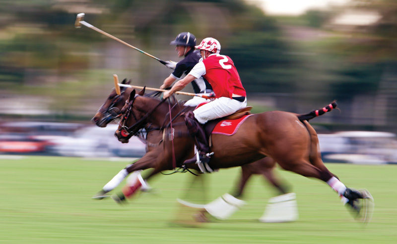 High-Goal-Polo-at-IPC